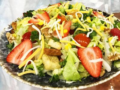 DinoLand Garden Salad